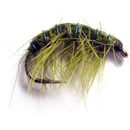Olive Shrimp
