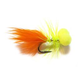 Booby Dancer Orange