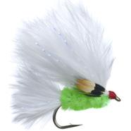 JC Fly JC Cats Whisker