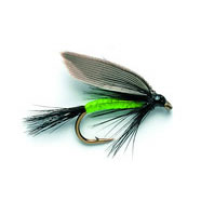 Wet Fly - BLACK GNAT, FLO BODY