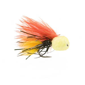 Fastmail Fly of the Month